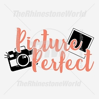 Picture Perfect Free Vector Download