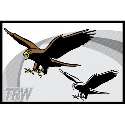 TRW Hawk 2 Vector Mascot - Download